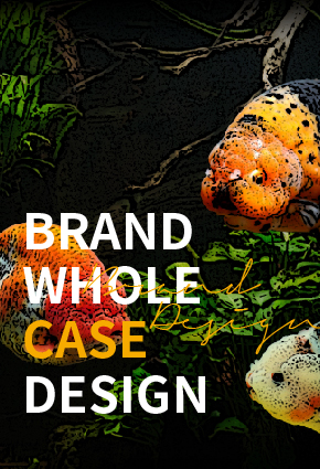 三只小鱼-品牌全案设计